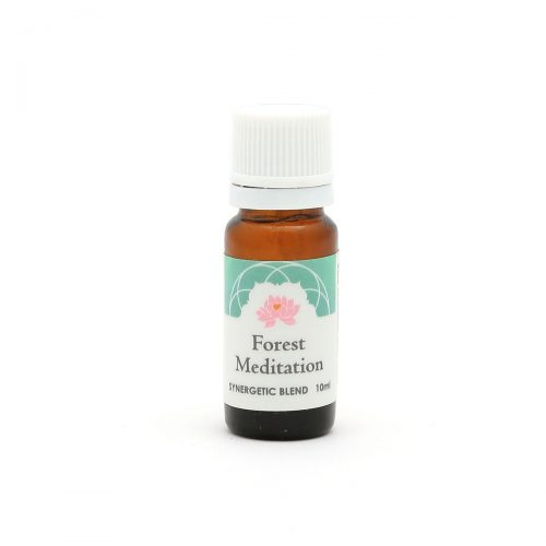 Essential Oil Aromatherapy Blend ~ Forest Meditation