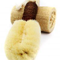 Sisal Dry Brush (medium)